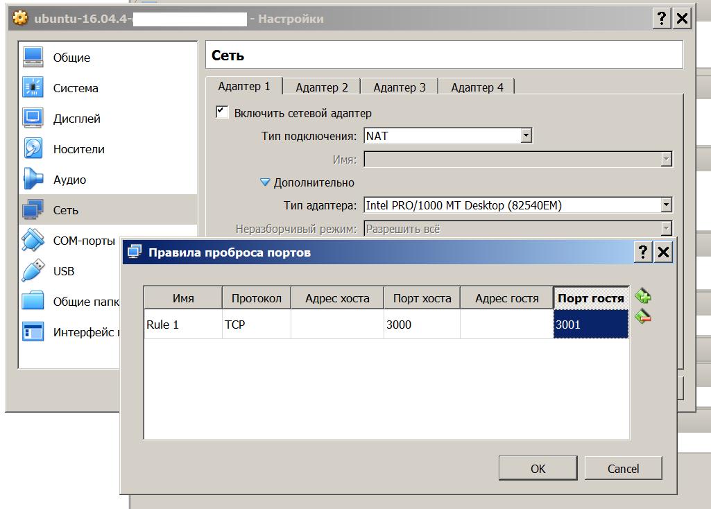 Окно Virtual Box, демонстрирующее проброс портов в данной виртуальной машине)